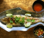 Grilled Sea bass with Thai herbs